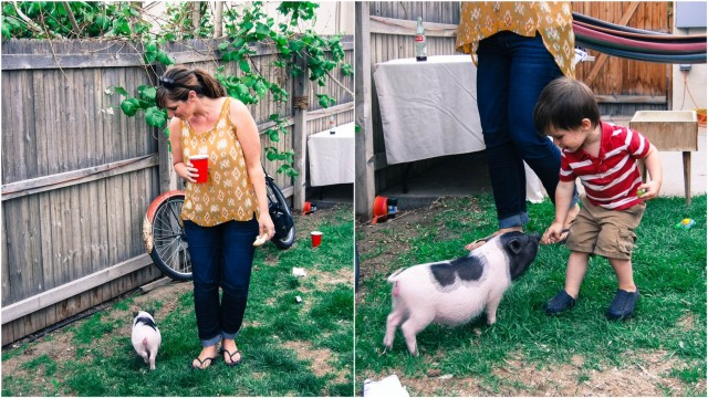 A Denver Home Companion | backyard bbqs
