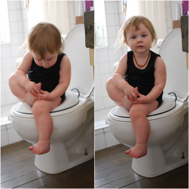 A Denver Home Companion | potty training